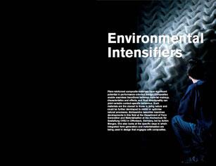 environmental intensifiers