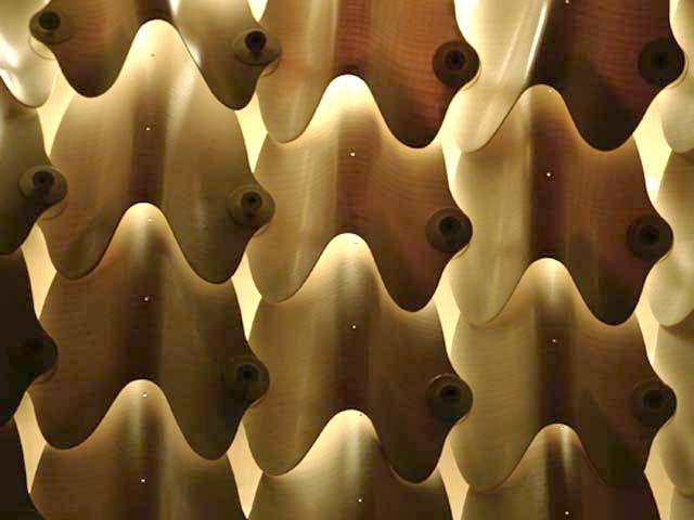 Differentiated Tensile Wood Laminate Morphologies