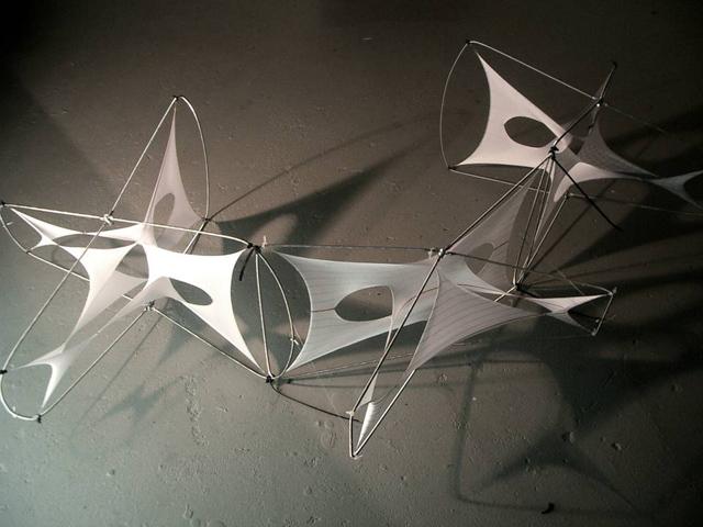 Membrane Frame Kinetics Achimmenges Net